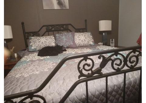 Black metal bed frame headboard and footboard